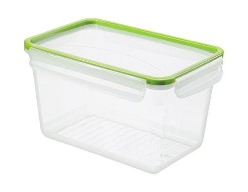 Rotho Clic & Lock, Aromafeste Aufbewahrungsbox mit Deckel, Inhalt 3 l, transparente Kunststoffbox (23.9x16x13.6 cm) mit Clip-Verschluss, BPA-freie Vorratsdose spülmaschinengeeignet Frischhaltedose, Plastik, grün