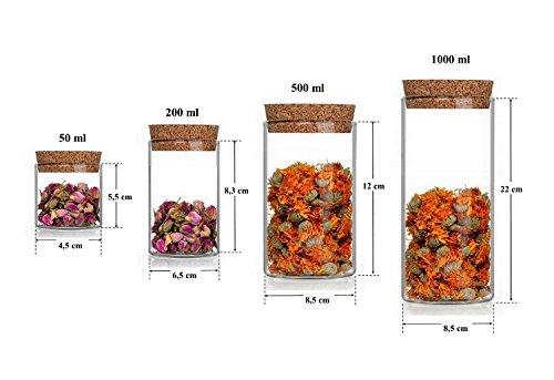6 leere Glasbehälter Vorratsdosen Glas 1 Liter l Vorrats-Behälter Vorratsgläser mit Korken-Verschluss auch in 50 200 und 500 ml von slkfactory (1 Liter)