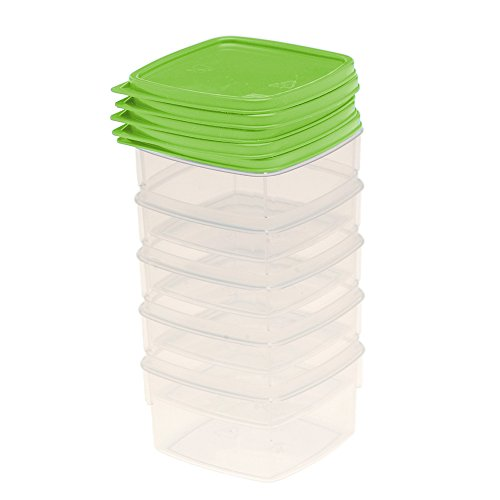 Unbekannt OKT 30870254000 Mini-Frosties Frischhaltedose 5 x 0,1 L, Capri/grün